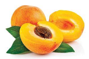 Những món ăn bài thuốc từ trái mơ chua tốt cho sức khỏe