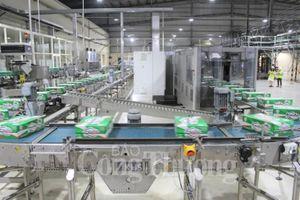 Thừa Thiên Huế: Chỉ số sản xuất công nghiệp quý I tăng gần 10% so với cùng kỳ