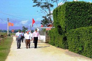 Thái Bình: Tập trung xây dựng khu dân cư nông thôn mới kiểu mẫu
