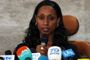 Ethiopia công bố báo cáo đầu tiên về vụ tai nạn máy bay Boeing 737 MAX 8