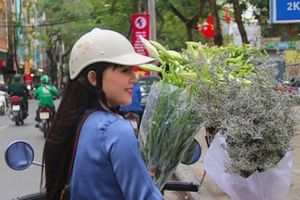 Hoa loa kèn cao nửa mét, giá trăm ngàn khiến người Sài Gòn lặn lội ra Hà Nội mua