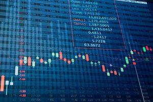 Hơn 100 mã chứng khoán nhà đầu tư nên tránh xa
