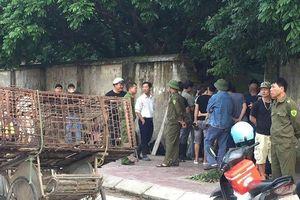 Đàn chó cắn chết bé trai ở Hưng Yên đã bị xử lý