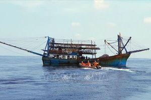 Cấp cứu kịp thời ngư dân gặp tai nạn trên biển Hoàng Sa