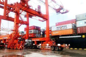 Cảng Quy Nhơn bất ngờ 'đòi' tăng vốn điều lệ