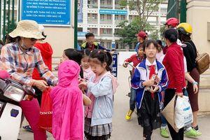 Làm rõ vụ việc 35 kg thịt gà có mùi lạ 'tuồn' vào Trường Tiểu học Chu Văn An