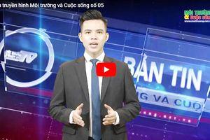Thái Lan đổ thêm 65 triệu USD cho hai dự án điện mặt trời tại Phú Yên