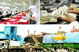 Bộ Tài chính: Tập trung sửa đổi Luật Quản lý sử dụng vốn nhà nước đầu tư vào DN