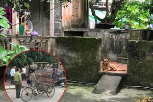 Công an bắt nhốt xong đàn chó cắn bé trai 7 tuổi thiệt mạng ở Hưng Yên