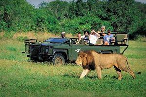 Ðiểm sáng du lịch Nam Phi