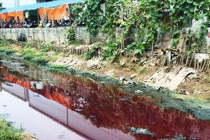 Tại khu công nghiệp Di Trạch, huyện Hoài Đức: Nhiều doanh nghiệp xả thải chưa xử lý ra môi trường