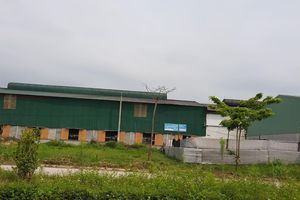 Hải Dương: Buông lỏng quản lý, Xí nghiệp vận tải Hồng Lạc cho thuê đất ở làm nhà xưởng