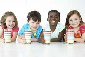 Các nước đang sử dụng sữa gì cho sữa học đường?