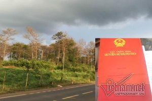 'Tham nhũng' 40ha đất rừng, nguyên thường vụ Tỉnh ủy nhận… huân chương lao động
