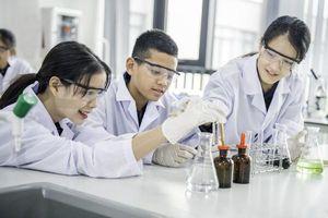 Cơ hội cho trường học Việt Nam đạt 'đẳng cấp quốc tế'