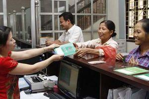 Gần 567.000 lượt hộ được vay vốn ưu đãi tại Ngân hàng CSXH Việt Nam