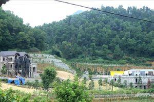 Sẽ xử lý nghiêm minh công trình sai phạm ở đất rừng Sóc Sơn