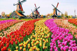 Hà Lan - đất nước nhỏ với nhiều thành tựu lớn