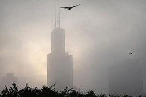 Những tòa nhà chọc trời của Mỹ 'sát hại' 600 triệu con chim mỗi năm