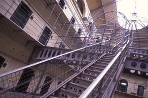 Tù nhân Mỹ kiện nhà tù vì chuột, giòi lổm nhổm