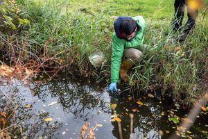 Ô nhiễm thuốc trừ sâu tràn lan nhiều sông ngòi ở châu Âu