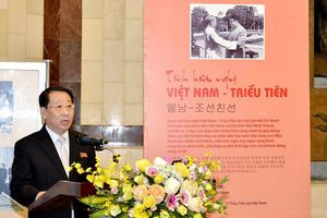 Đại sứ Triều Tiên gặp và chào tạm biệt Phó Chủ tịch nước Đặng Thị Ngọc Thịnh trước khi về nước
