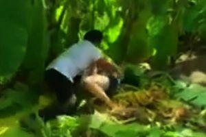 Điều tra vụ thiếu nữ bị kẻ lạ hãm hiếp ở cánh đồng vắng