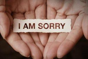 Nhẹ nhàng lời xin lỗi