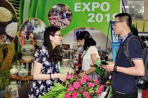 VIETNAM EXPO 2019 thu hút 500 doanh nghiệp tham gia
