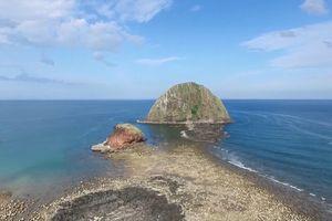 Rạn san hô Hòn Yến muốn đẹp, du khách nhớ 'nhẹ chân' giúp!