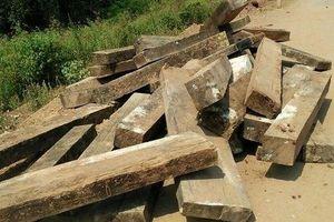 Khởi tố vụ án phá rừng nghiêm trọng trong Vườn Di sản Phong Nha