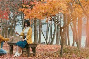 'Ước hẹn mùa thu': Hành trình Quốc Anh tìm lại bạn gái Hoàng Oanh sau 15 năm hôn mê và rừng thu tuyệt đẹp ở đảo Nami (Hàn Quốc)
