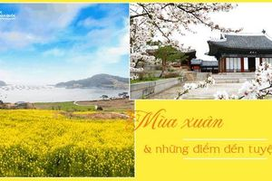 Những điểm đến đầy thu hút trong tiết trời xuân tại Hàn Quốc