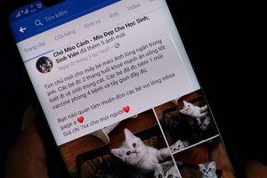 Sự thật về Alaska, Husky giá 800.000 đồng trên Facebook
