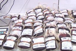 Việt Nam thiếu máu hiến, tại sao tính chuyện xuất khẩu huyết tương?