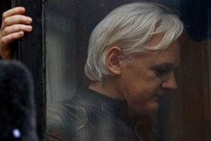Nga: Bắt giữ Assange là 'bóp chết' tự do