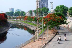 Nhật Bản muốn tài trợ xử lý nước sông Tô Lịch: Mùi nước giảm ngay sau 3 ngày!
