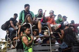 Giải cứu 143 người di cư Honduras bị bắt cóc, đòi tiền chuộc