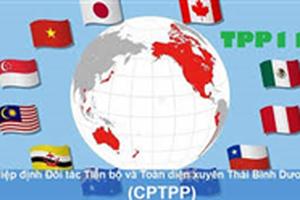 Bộ Kế hoạch và Đầu tư ban hành Kế hoạch thực hiện Hiệp định CPTPP