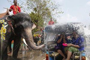 Lễ hội nổi nhất Thái Lan đối mặt nguy cơ bất ngờ
