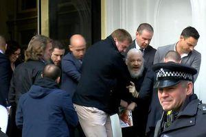 Nhà sáng lập Wikileaks bị khiêng khỏi đại sứ quán Ecuador ở London
