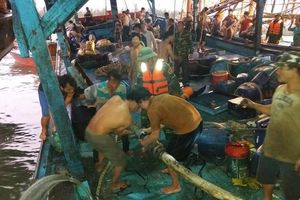 51 thuyền viên gặp nạn trên biển