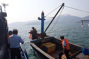 Tàu tận diệt hải sản liên tiếp 'tấn công' bán đảo Sơn Trà