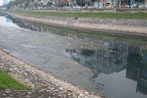 Nhật Bản tài trợ công nghệ làm sạch, giảm mùi nước sông Tô Lịch