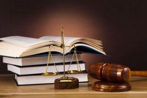 Sửa đổi luật để thực thi Hiệp định CPTPP