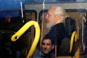 'Sự phản bội lớn nhất'- điều gì chờ đợi Assange?