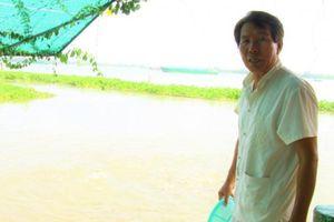 Lão nông và niềm vui nuôi dưỡng 'đàn cá cưng' trên sông Tiền