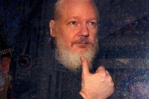 Lập trình viên liên quan tới nhà sáng lập WikiLeaks bị bắt