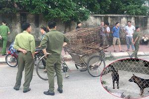 Chó 'điên' lăn ra chết sau khi cắn liên tiếp 5 người ở Hà Tĩnh