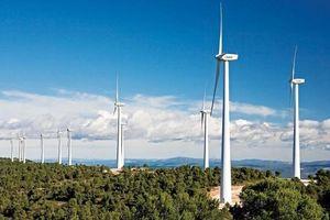 Quảng Trị 'đón' thêm dự án điện gió hơn 1.500 tỷ đồng